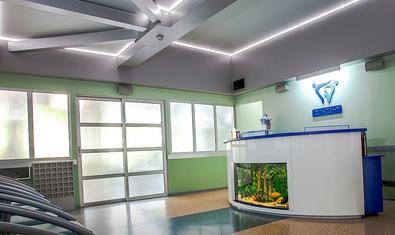 Диндент, стоматология